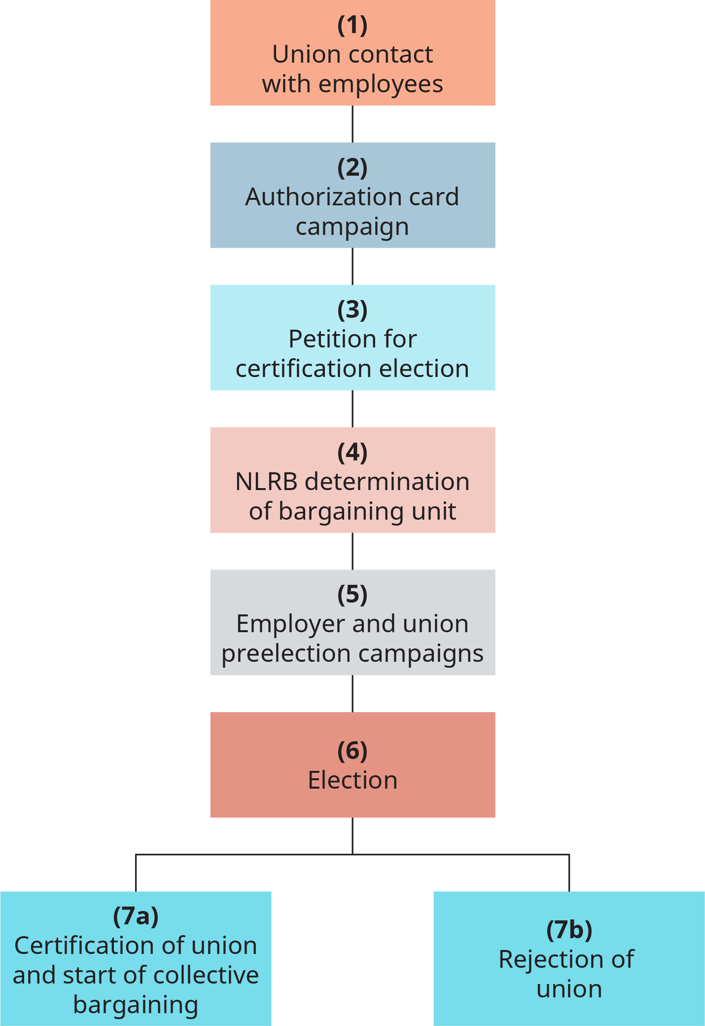 The steps are numbered 1 through 7. 1, union contact with employees. 2, authorization card campaign. 3, petition for certification election. 4, N L R B determination of bargaining unit. 5, employer and union pre election campaigns. 6, election. 7 a, certification of union and start of collective bargaining. 7 b, rejection of union.
