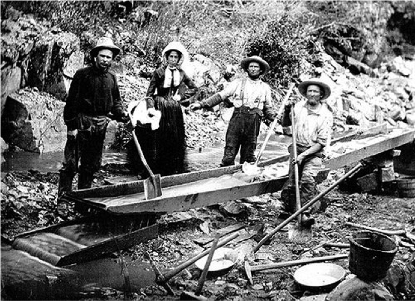 Photo of three men and a woman panning for gold, using a sluice.
