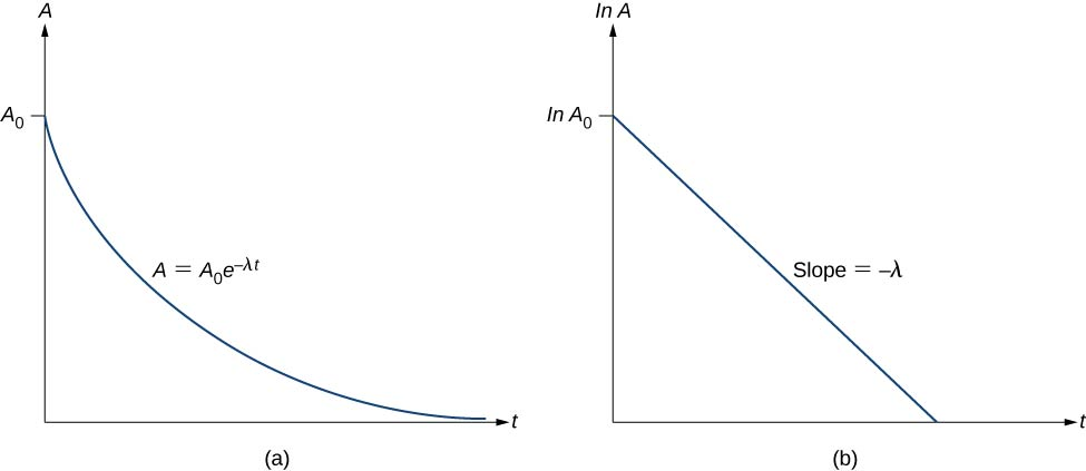 Figure a shows a graph of A versus t. It starts at point A subscript 0 and reduces with time. The rate of reduction decreases slowly till A is very close to 0, making a curved plot on the graph. The plot is labeled A = A subscript 0 e to the power minus lambda t. Figure b shows a graph of ln A versus t. It starts at ln A subscript 0 and slopes downwards in a straight line. The slope of the line is labeled minus lambda t.