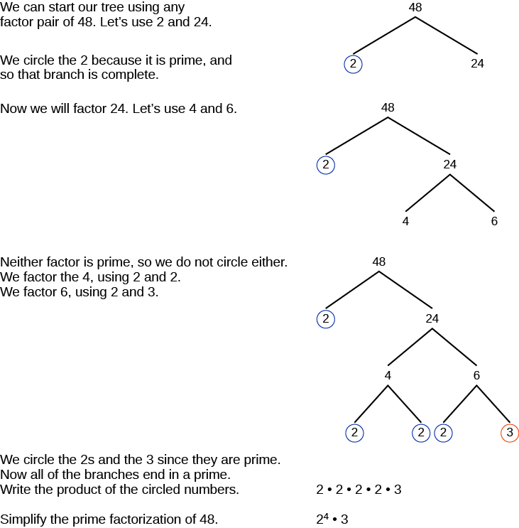 Prime Factorization Tree Worksheet – Prime Factorization Tree Worksheet