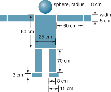 A diagram of several masses arranged to look like a model of a person is shown. At the top is a sphere, radius 8 cm. Centered below it is a rectangle 25 cm wide horizontally and 60 cm tall that looks like the body of the person. On either side of the rectangle are rectangles measuring 60 cm horizontally and 5 cm tall that look like the outstretched arms. The tops or the arms are aligned with the top of the body, and each arm extends out from the sides of the body horizontally. At the end of each arm is a 5 cm wide square. Below the body are the legs. Each leg is 70 cm tall and 8 cm wide. The tops of the legs are aligned with the bottom of the body. The outer sides of the legs are aligned with the sides o the body. Below each leg are the feet, which are 3 cm tall and 15 cm wide. The inner side of each foot is aligned with the inner side of the leg above it.