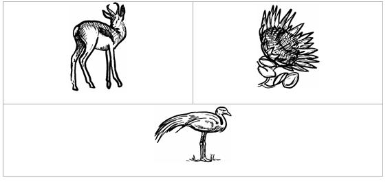 galjoen coloring pages for kids - photo #1