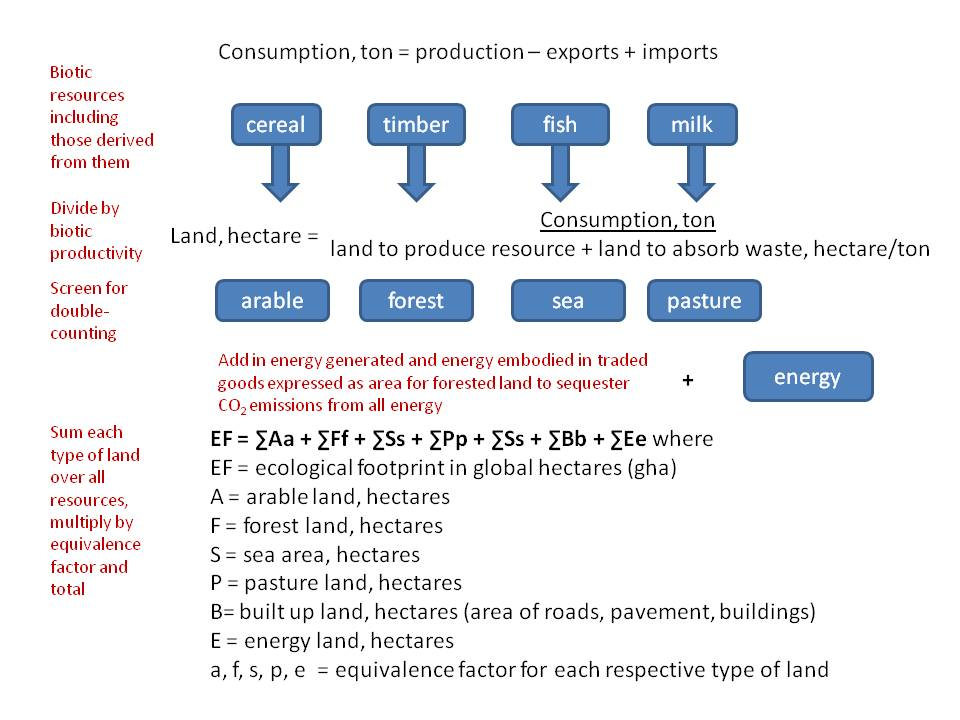 Compound Calculation Steps for Ecological Footprint Analysis