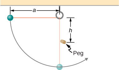 A small ball is shown attached to a string of length a. A small peg is located a distance h below the point where the string is supported. The ball is released when the string is horizontal  and swings in a circular arc.