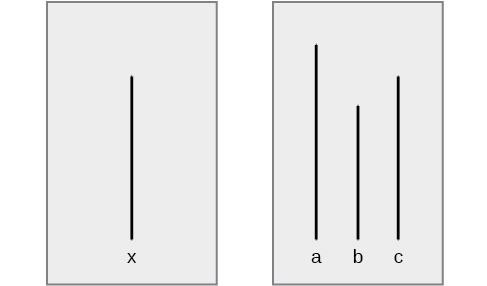 """A drawing has two boxes: in the first is a line labeled """"x"""" and in the second are three lines of different lengths from each other, labeled """"a,"""" """"b,"""" and """"c."""""""