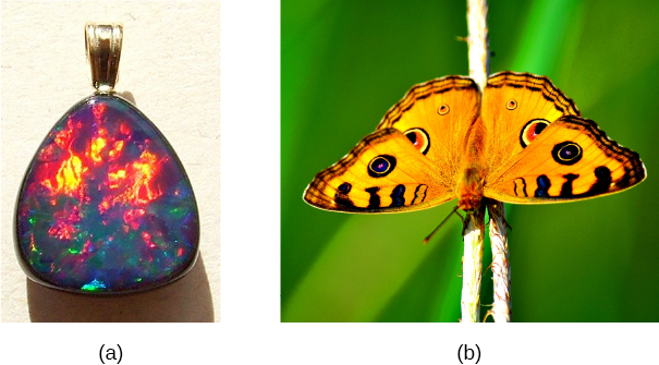 Figure a is a photograph of an opal pendant reflecting various colours. Figure b is the photograph of a butterfly.