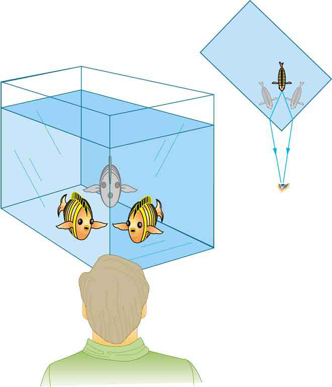 The Law Of Refraction Physics Ii
