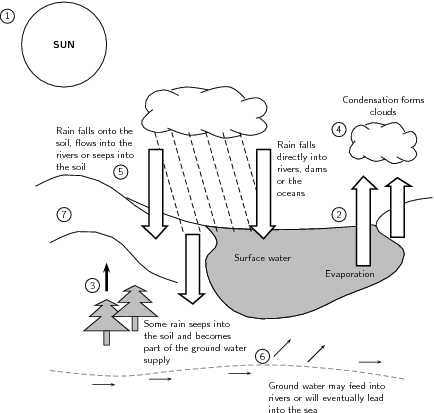 Printables Water Cycle Worksheet High School water cycle worksheet middle school more information worksheets school