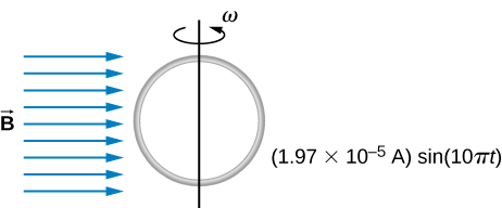 Figure shows a circular loop of wire mounted on a vertical shaft and rotated in a region of uniform magnetic field perpendicular to the axis of rotation.