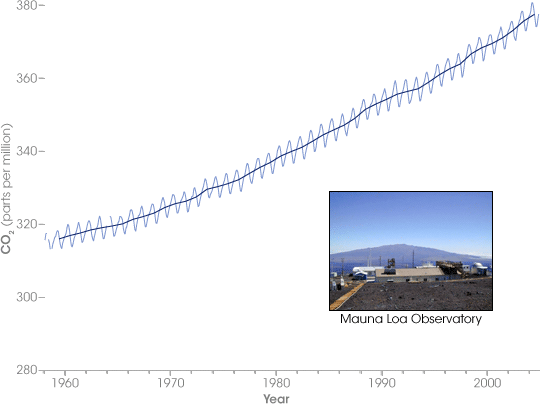CO2 concentrations at the Mauna Loa Observatory