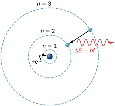 An illustration of the Bohr model of a single electron atom. Three possible electron orbits are shown as concentric circles centered on the nucleus. The orbits are labeled, from innermost to outermost, n=1, n=2, and n=3. An electron is shown moving from the n=3 orbit to the n=2 orbit, and emitting a photon with energy delta E equals h f.